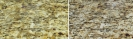 Granite Oil Stain Before & After_1